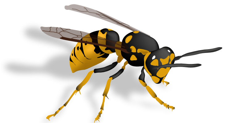 APC ALPINE PEST CONTROL Yellow Jacket Wasp and Bee Removal