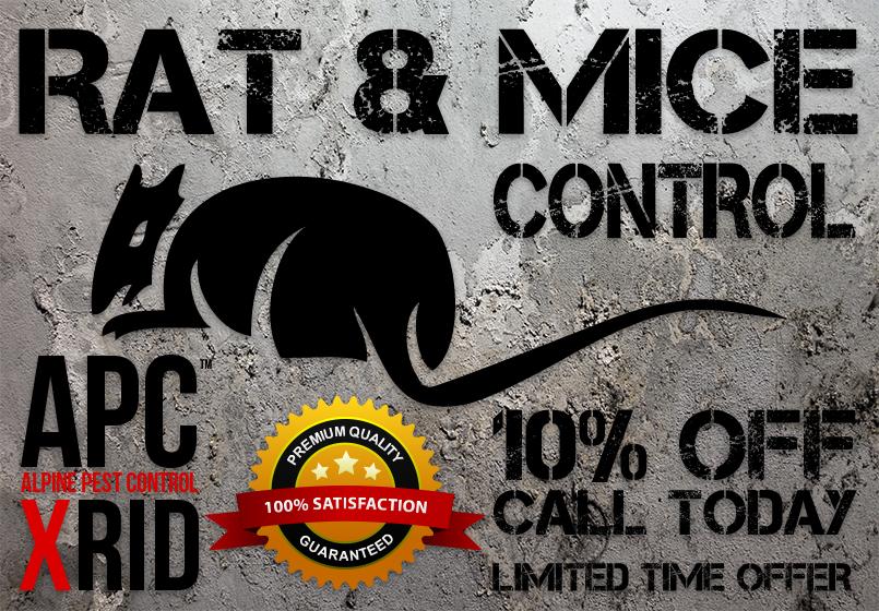 APC-ALPINE-PEST-CONTROL-SEWER-RAT-AND-MICE-TROUBLE-XRID-PEST-CONTROL